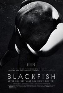 Blackfish poster