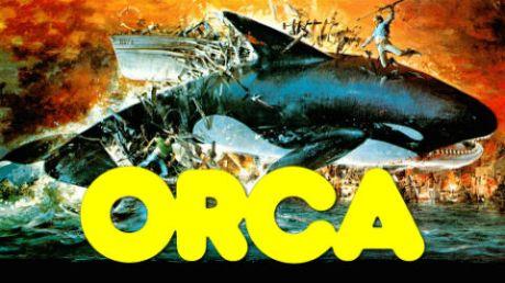 orca-the-killer-whale2