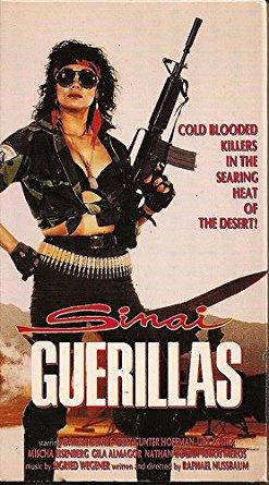 sinai-guerrillas